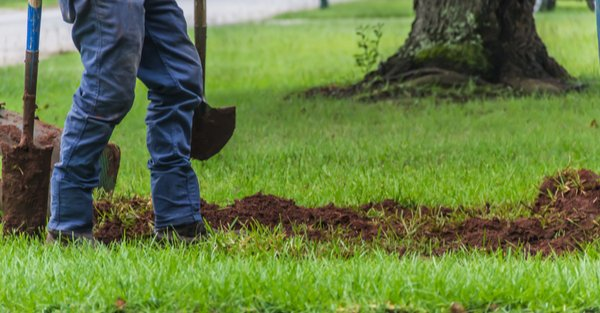 landscaper digging